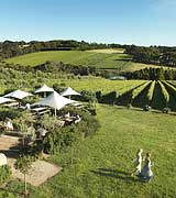 Mornington Peninsular Vineyards